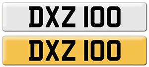 DXZ 100